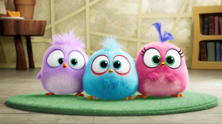 The Angry Birds Movie 2: Happy Father's Day From The Hatchlings! (Spot)