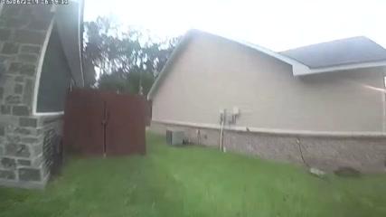 Oh deer! Texas burglar turns out to be harmless doe